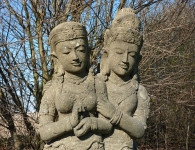 Staudengärtnerei Pfungstadt Buddhas